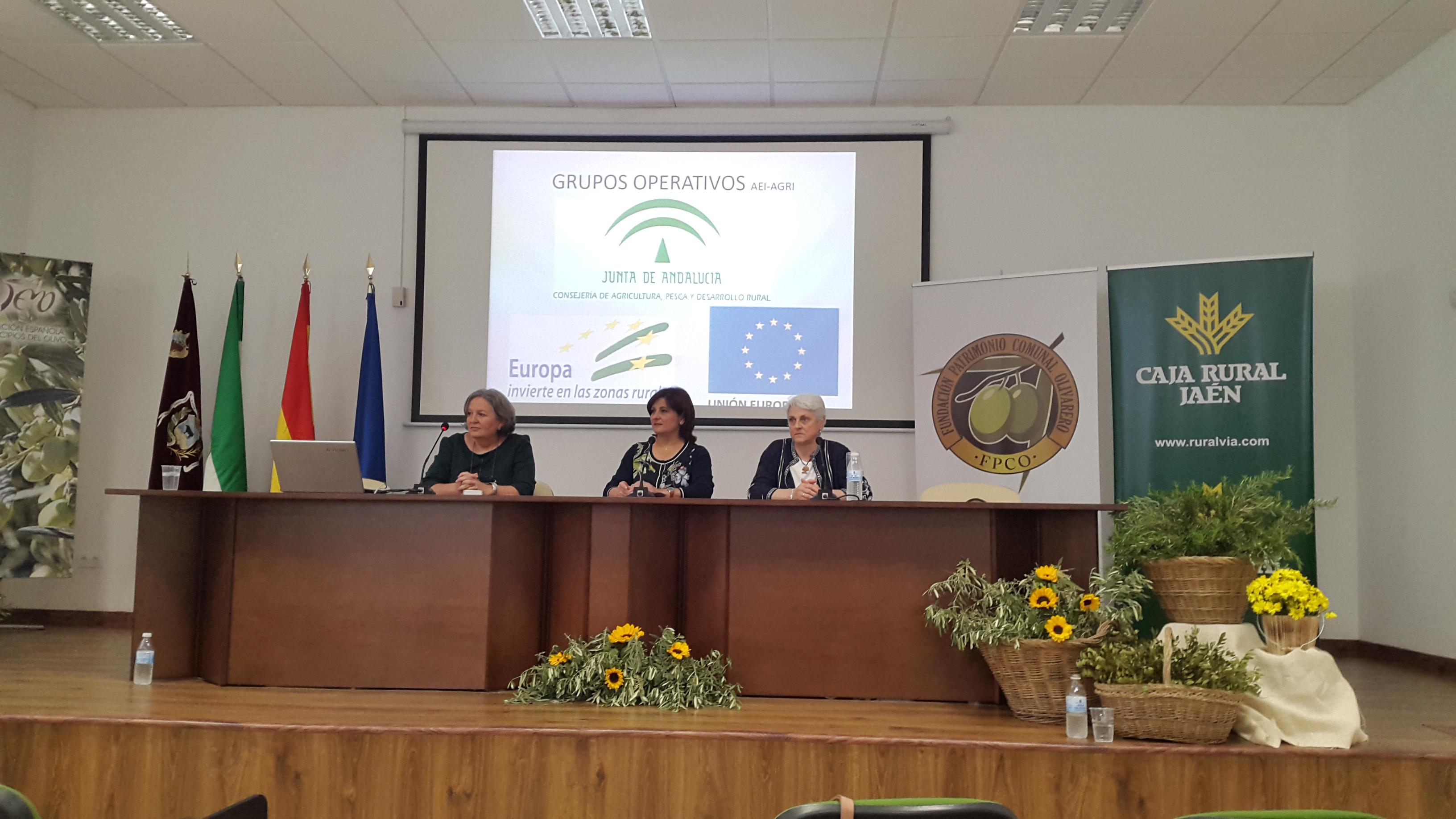 Presentación del proyecto en el Simposium de la Feria de Olivo de Montoro