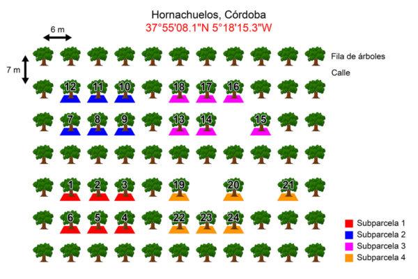 esquema_Finca-HORNACHUELOS_2L
